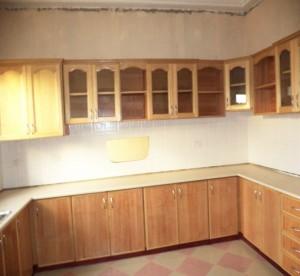 Kitchen Cabinet #18